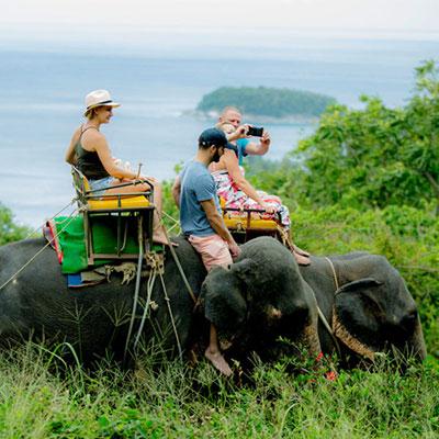 Seaview elephant trekking